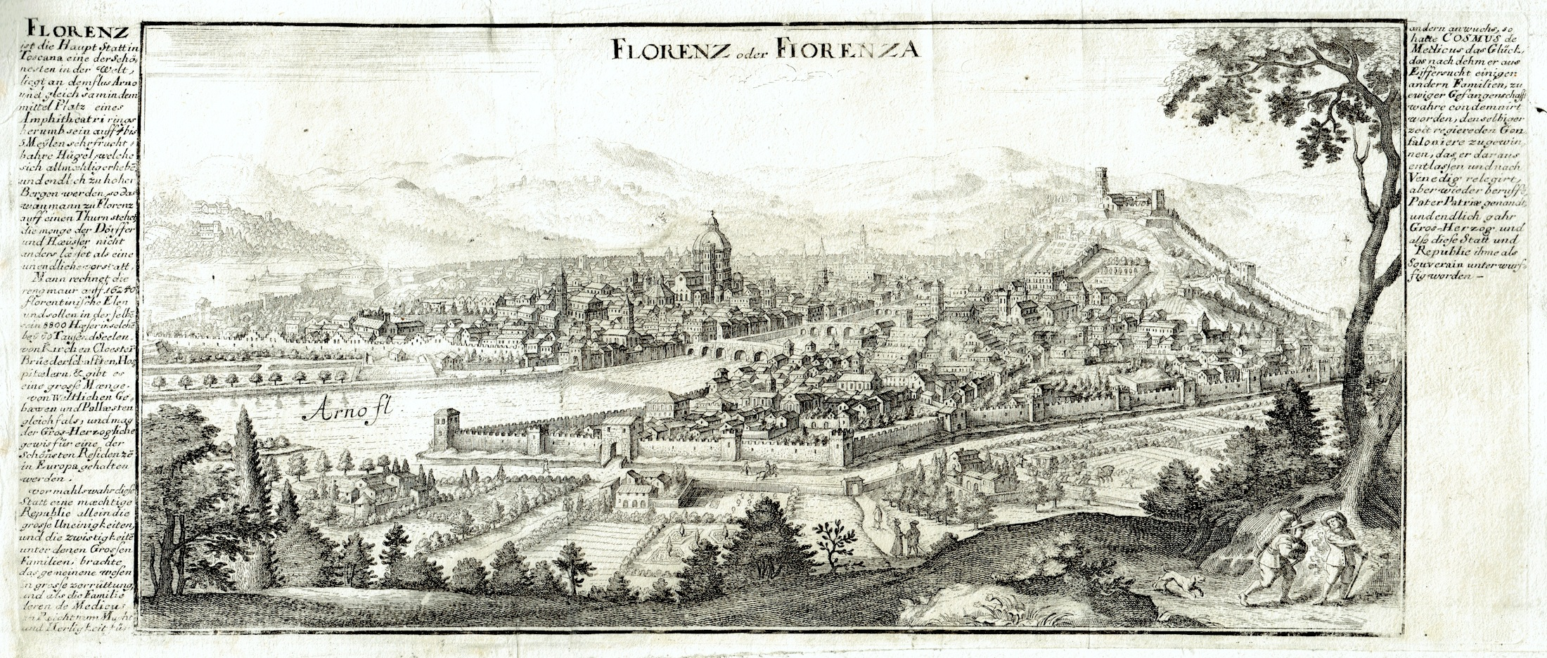firenze stridbeck